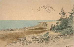 Fra Jomfruland, 1893